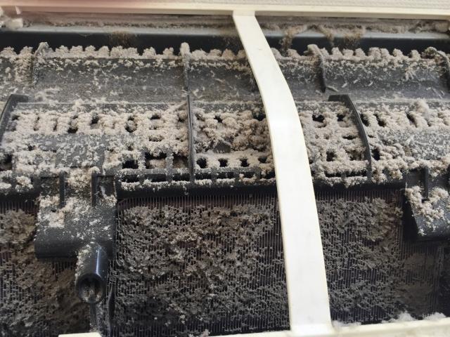 1.9.1_松江市・出雲市・米子市・雲南市のハウスクリーニングは片付け堂!夏本番に向けてエアコンをきれいに!!|不用品回収|クリーニング|島根|鳥取